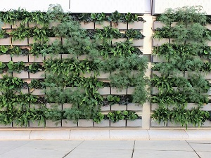 Sonic Passages Green Wall