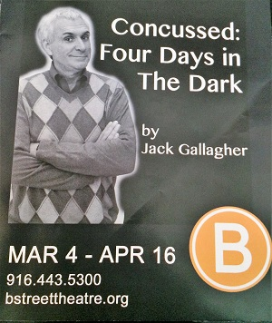 Picture of Concussed: Four Days in the Dark Program