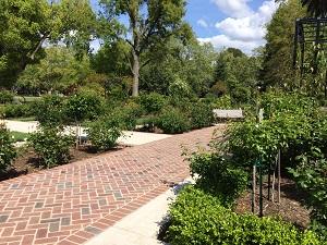 Picture of McKinley Park Rose Garden Walkway