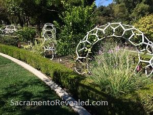 Photo of McKinley Park Rose Garden - Butter fly Habitat Garden