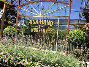 Picture of High-Hand Nursery Signage