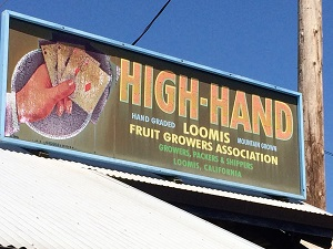Picture of High-Hand Nursery Fruit Packing Shed