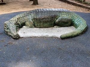 Picture of Sacramento Zoo Wildlife Art