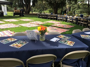 Picture of tables set up in Capitol Park for IFBC Lunch