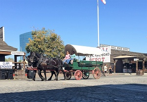Photo of horse & wagon Waterfront Days