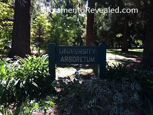 photo of University Arboretum Sign