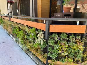 Photo of Origami Asian Grill Patio