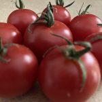 Photo of tomatoes for Sacratomato week
