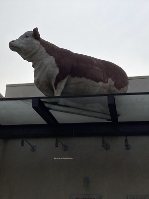 Photo of Riverside Clubhouse Bull